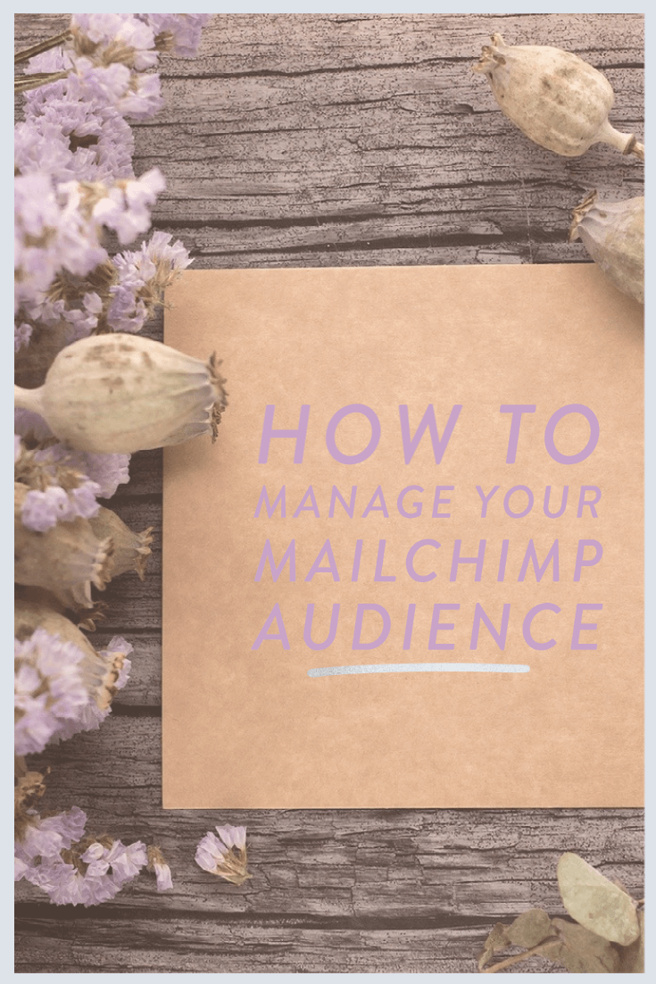 How to manage your Mailchimp Audience blog post